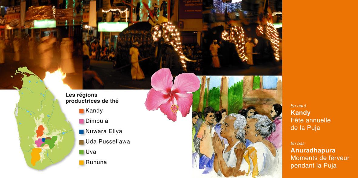 Sri_Lanka_blog_04.jpg